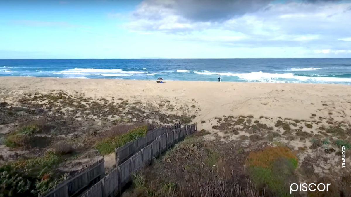 Bar Surfcasting 0