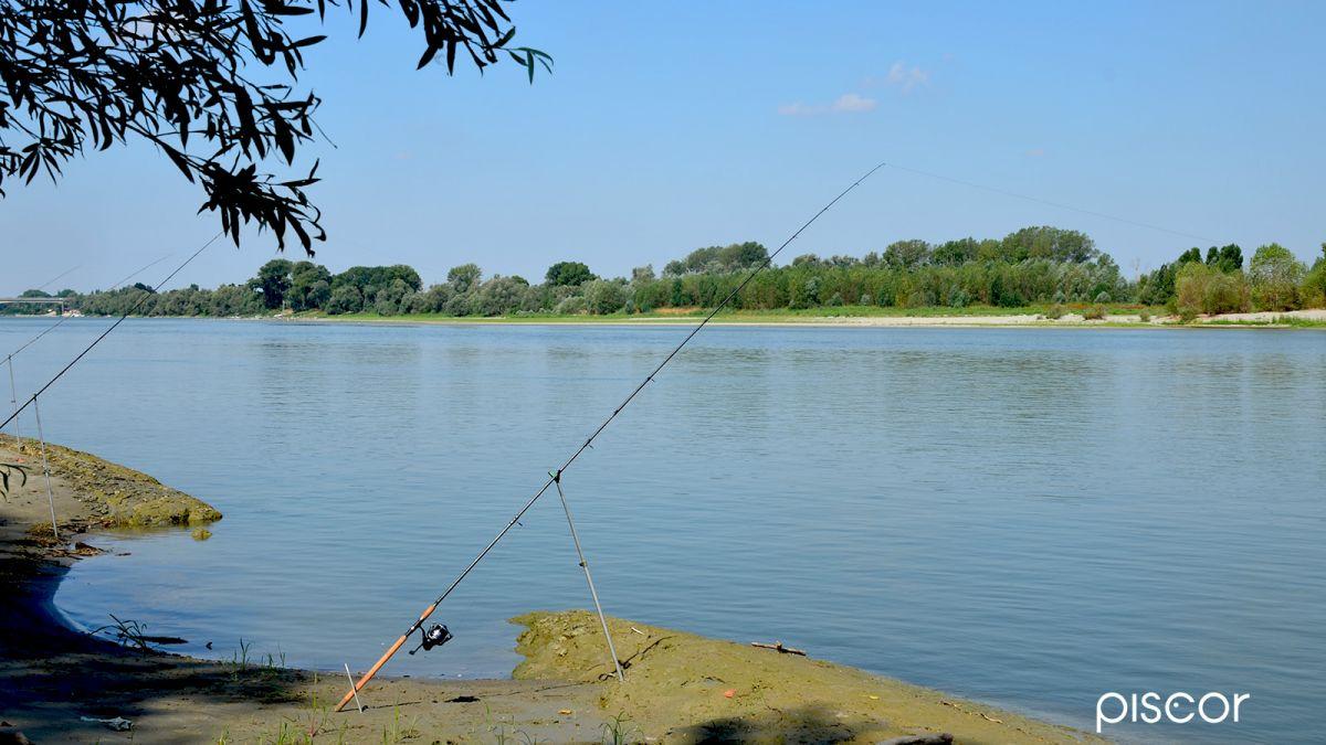 Barbel Fishing 0
