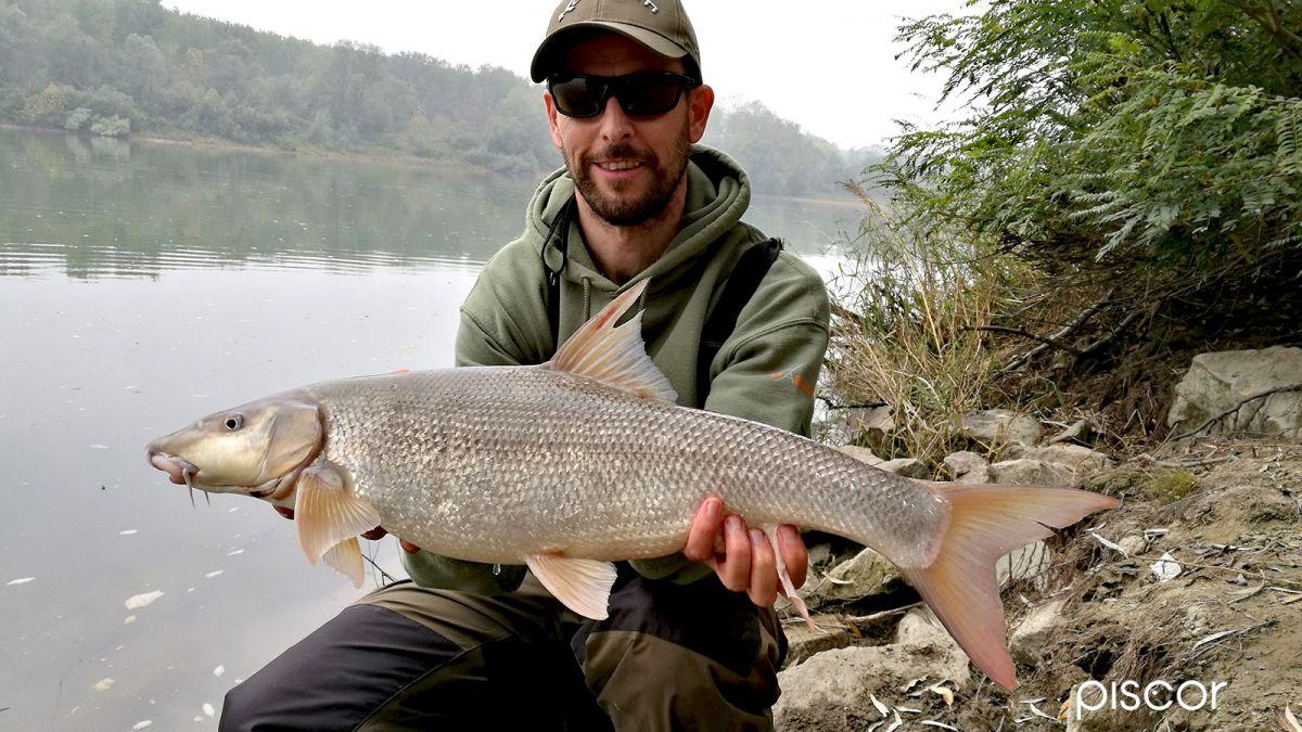 Barbel Fishing 3