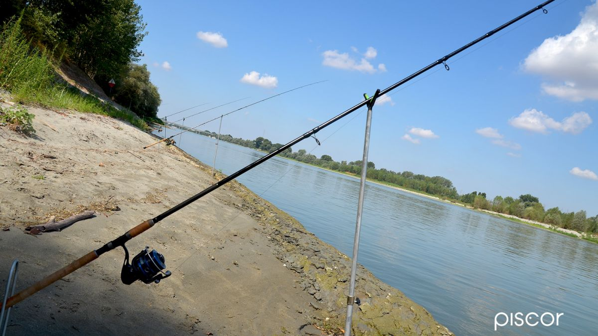 Barbel Fishing 6
