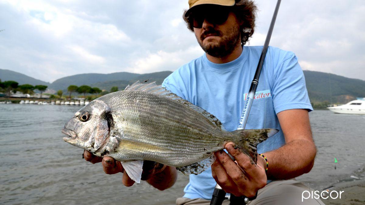 Beach Ledgering Pesca a Fondo 1