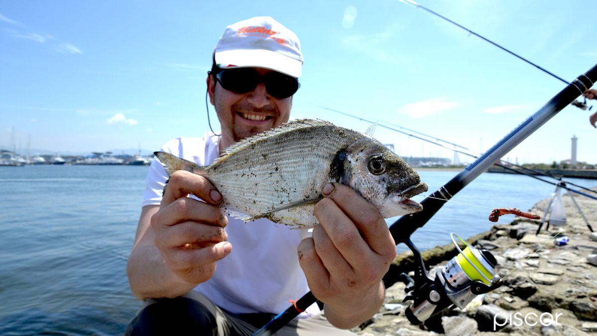 Beach Ledgering Pesca a Fondo 8