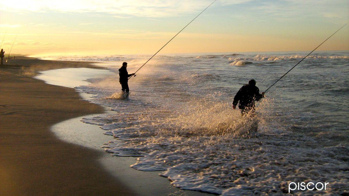 Bolognese dalla Spiaggia 0