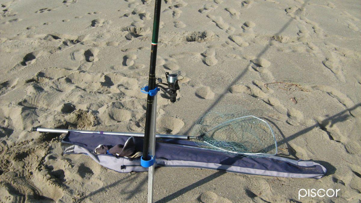 Bolognese dalla Spiaggia 2