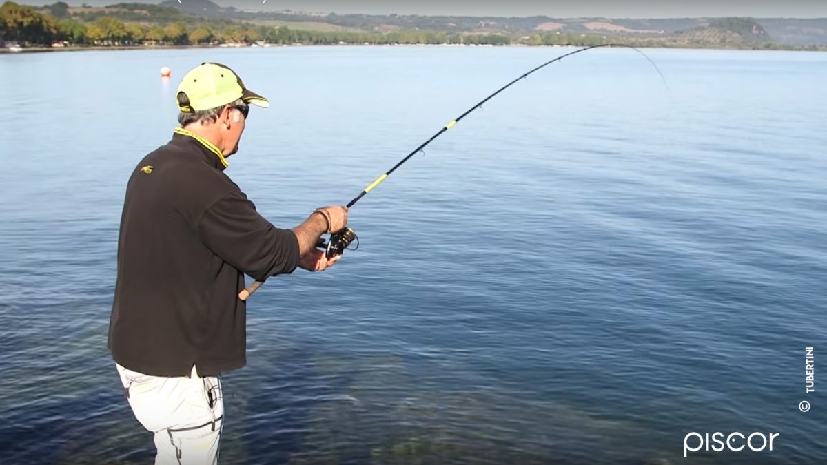 Carpes Tanches Feeder 2