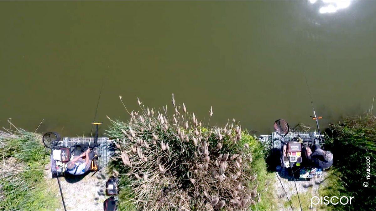 Come pescare a Pellet Feeder nelle Fisheries 12