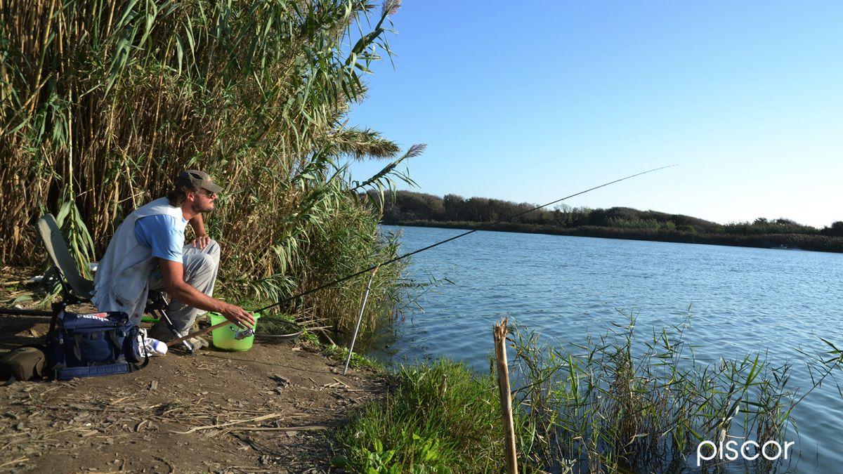 Come Pescare le Orate 1