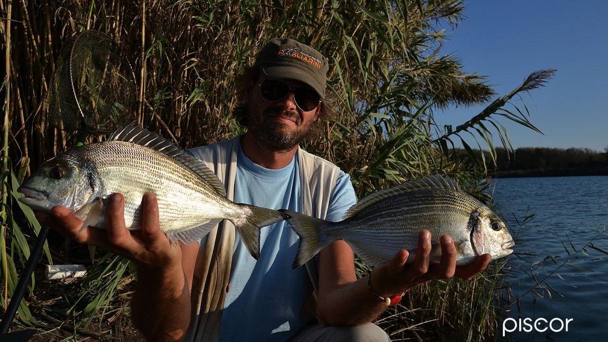 Come Pescare le Orate 4