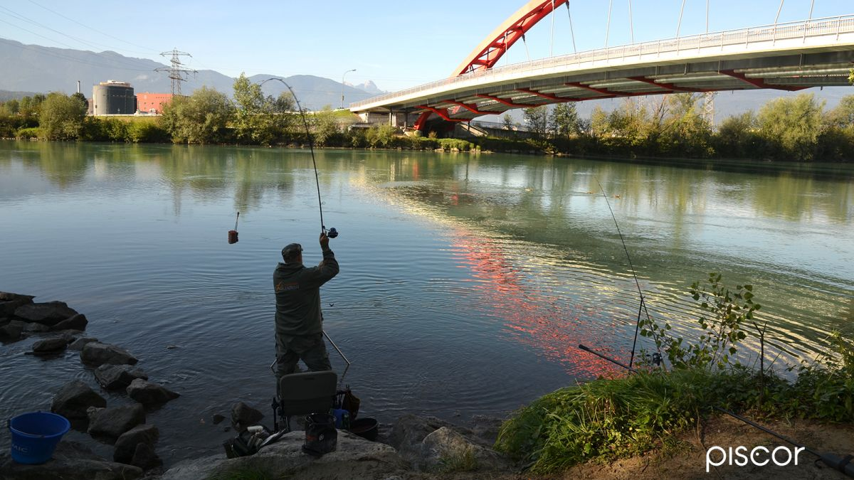 Feeder Pesca 1