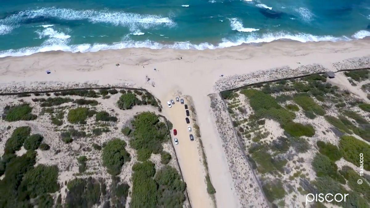 Marbré et Dorade en Surfcasting 4