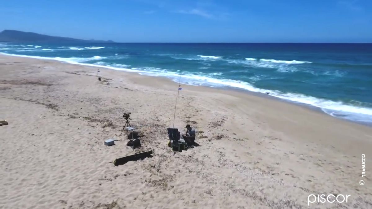 Marbré et Dorade en Surfcasting 5