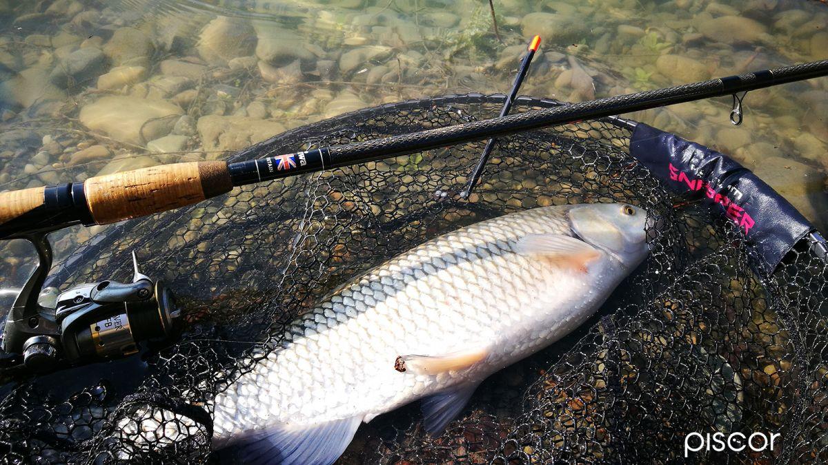 Montature Pesca Galleggiante Inglese 3