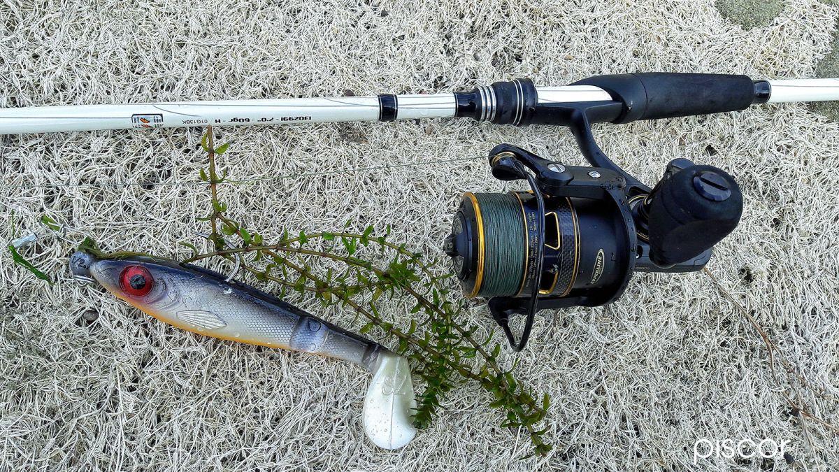 Mulinello Pesca del Luccio 10