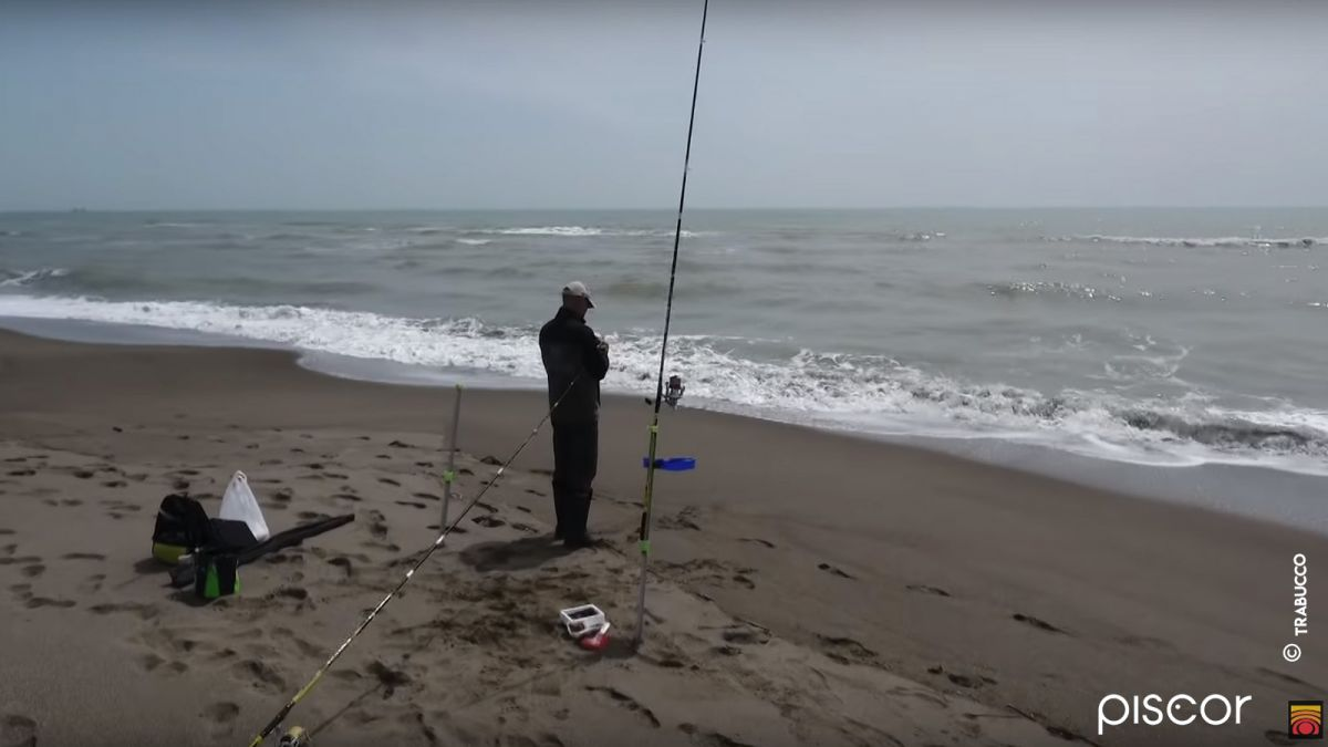 Ombrine A Surfcasting 1