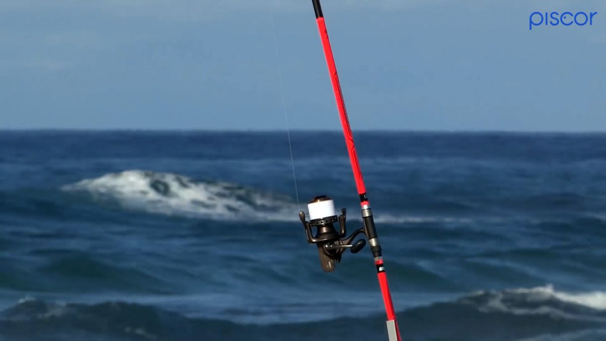 Pêche à la Dorade en Surfcasting 5