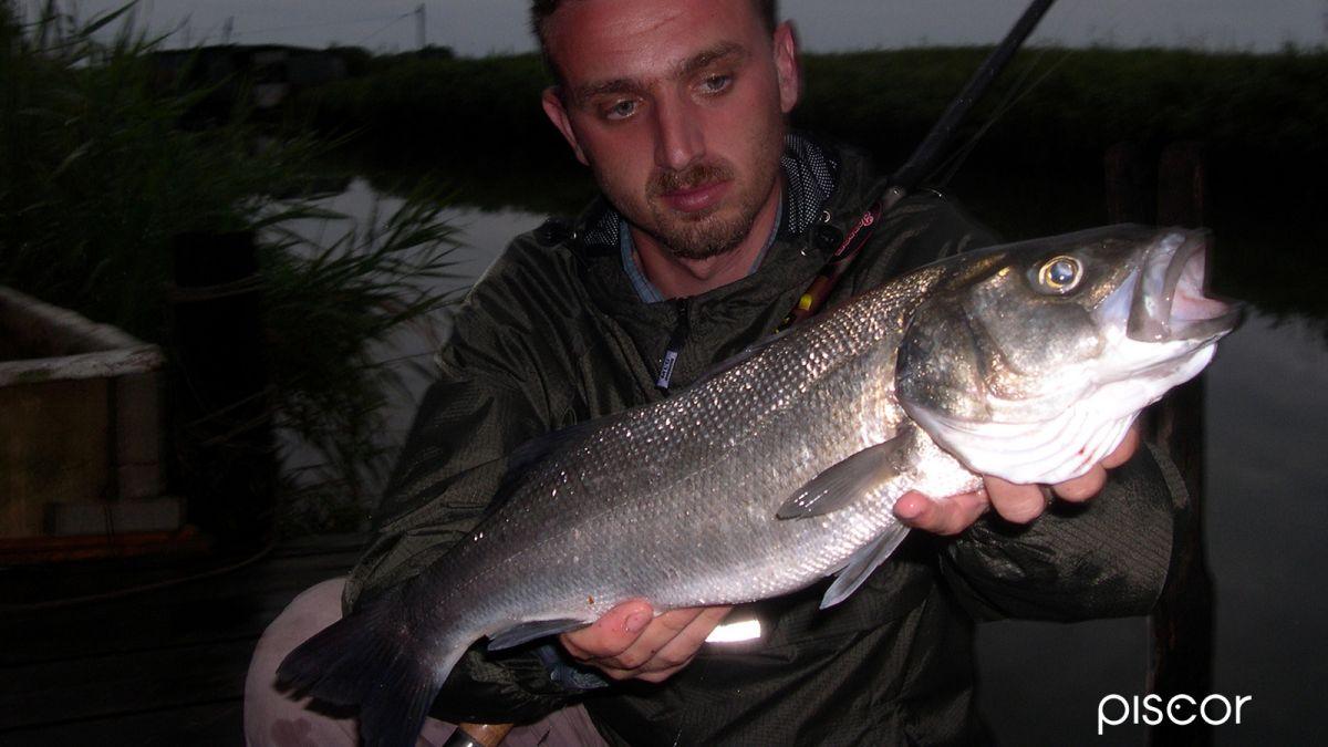 Pêche au Bar 1
