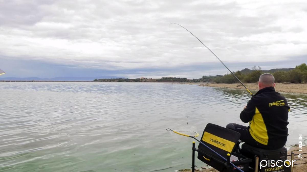 Pêche au Feeder 4
