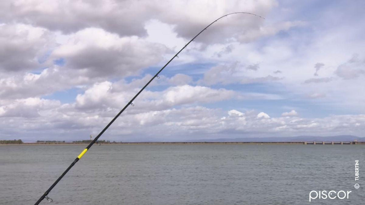 Pêche au Feeder 9