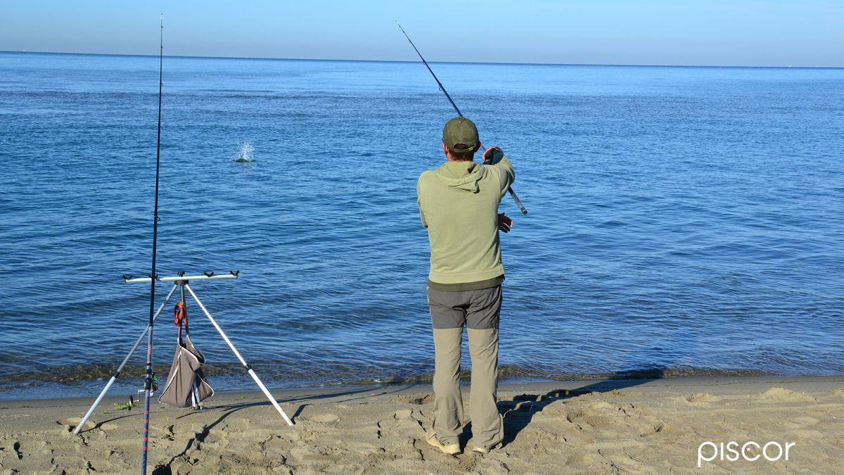Pêche au Feeder en Mer 0