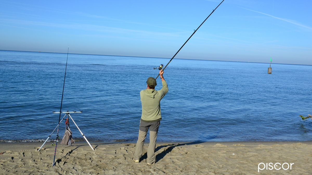 Pêche au Feeder en Mer 1