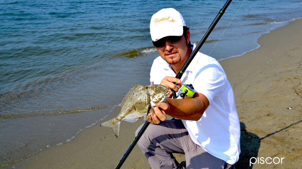 Pêche au Feeder en Mer 6