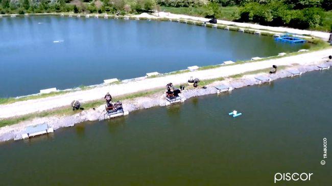 Pêche au Pellet Feeder dans les Réservoirs Privés 0