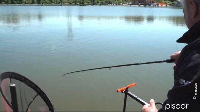 Pêche au Pellet Feeder dans les Réservoirs Privés 4