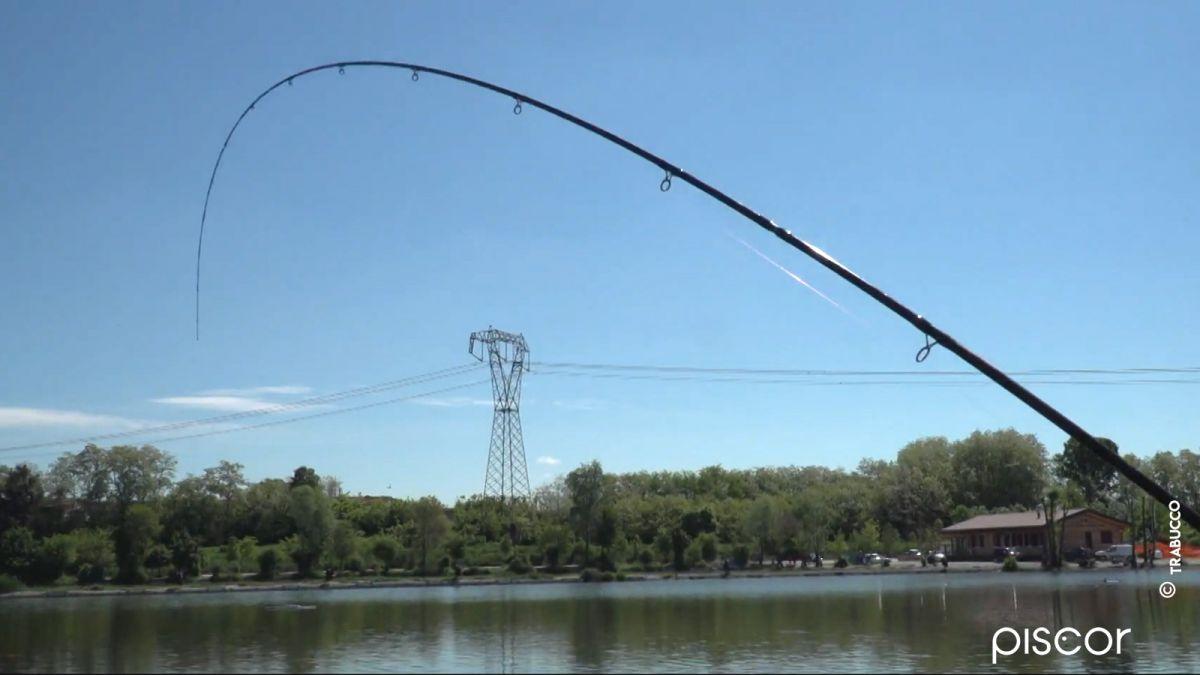 Pêche au Pellet Feeder dans les Réservoirs Privés 6