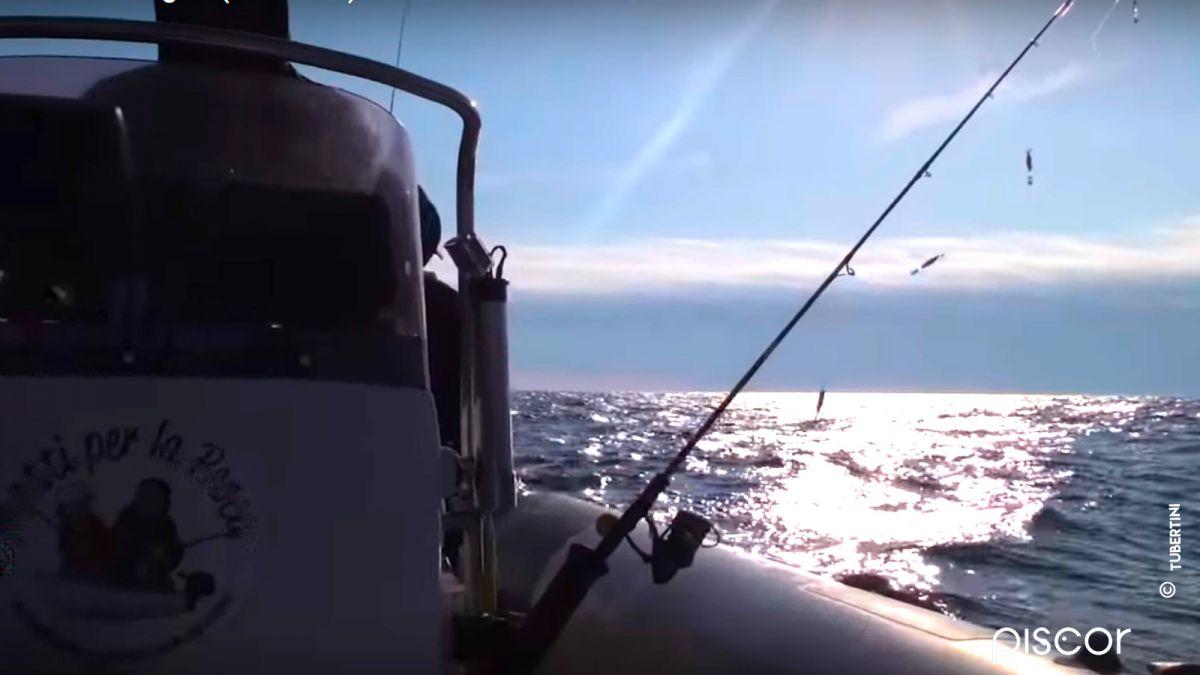 Pêche aux Calamars 7