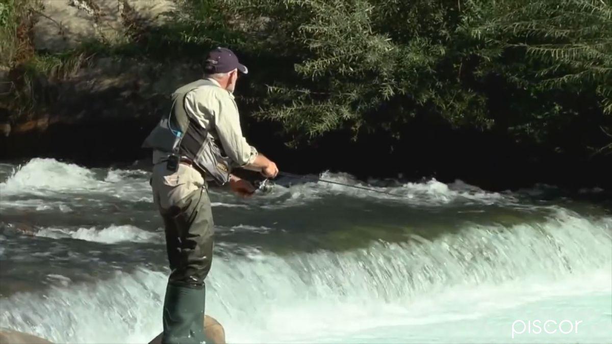 Pêche aux Leurres en Ruisseau 1