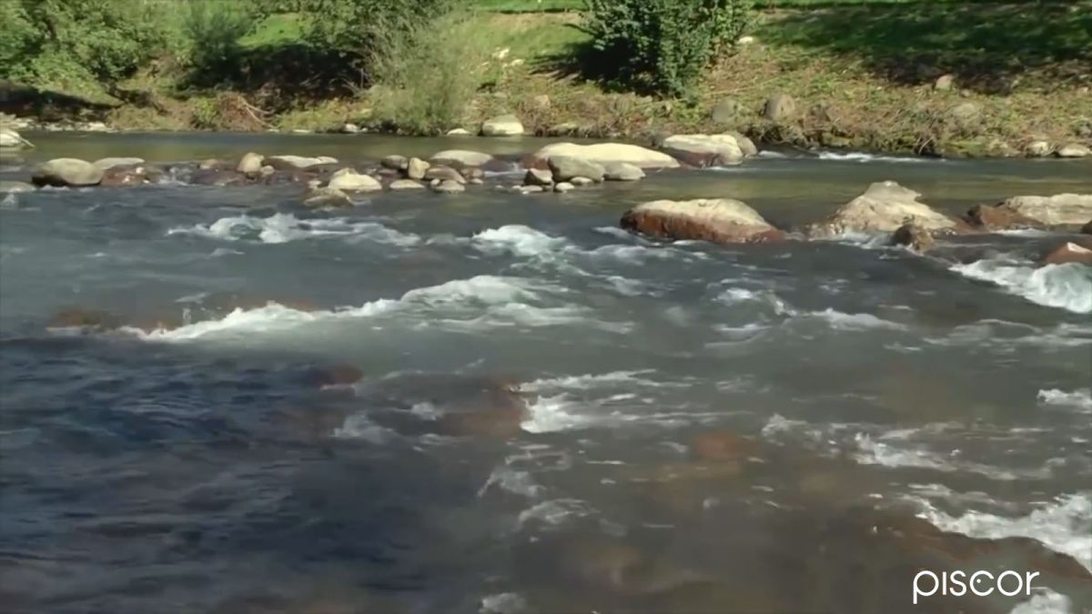 Pêche aux Leurres en Ruisseau 3