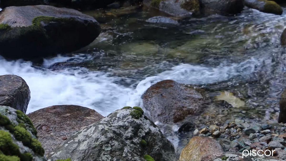 Pêche aux Leurres en Ruisseau 5
