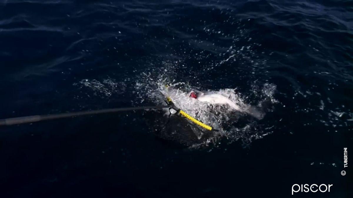 Pêche de la Dorade : Comment Réaliser un Montage à Trois Hameçons 1