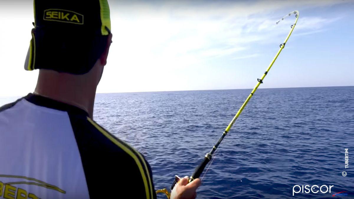 Pêche de la Dorade Coryphène 2