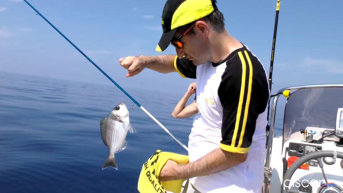 Pêche de la Dorade Grise à Soutenir 12