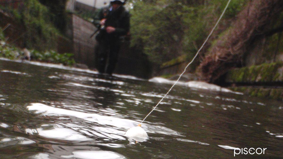 Pêche de la Truite au Flotteur en Eau Courante 7