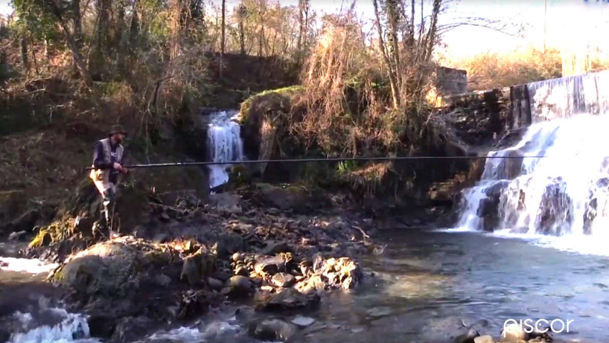 Pêche de la Truite en Ruisseau 3