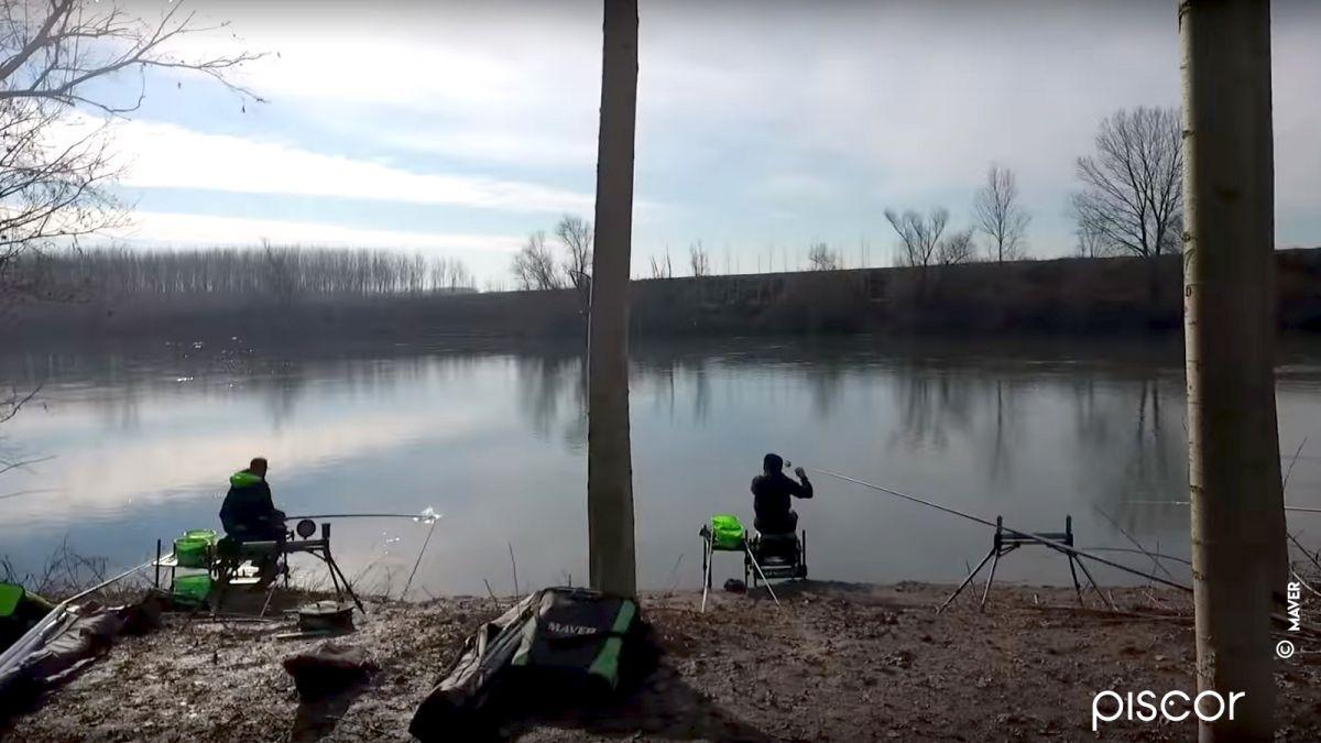 Pêche du Barbeau à la Grande Canne 0