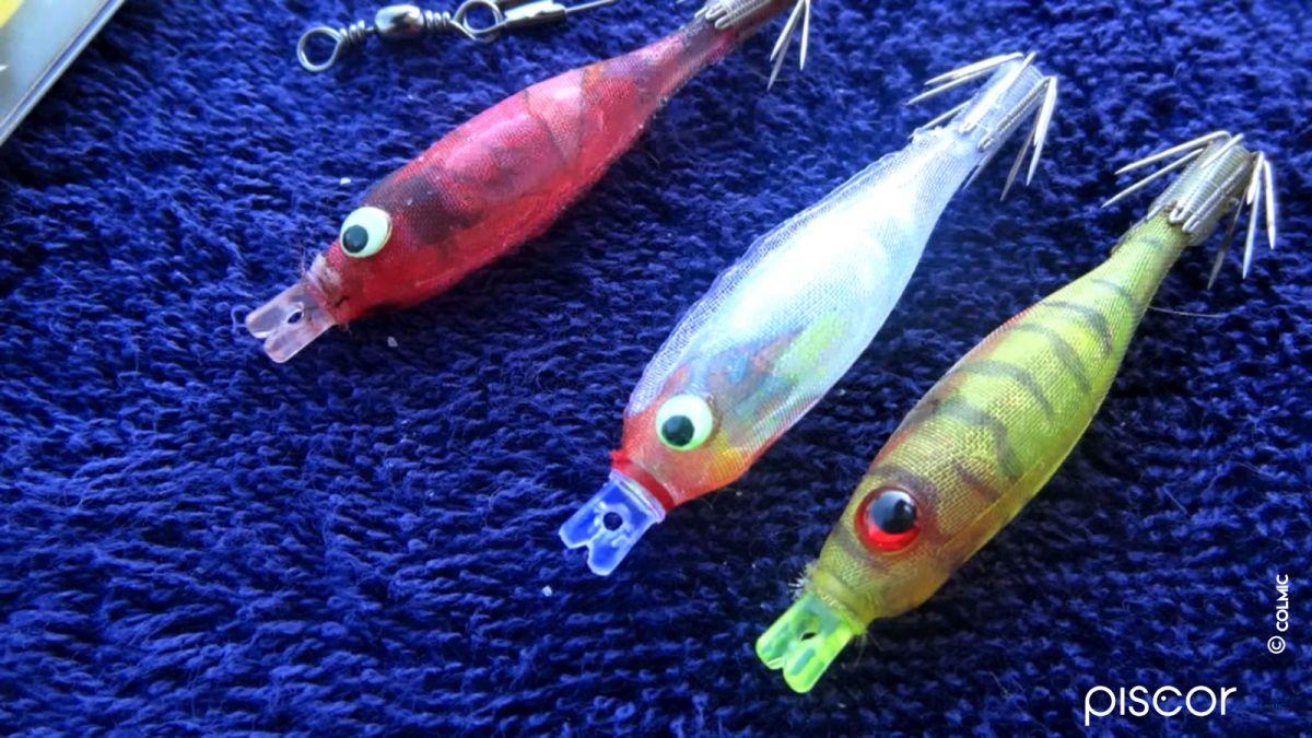 Pêche du Calamar en Bateau 7