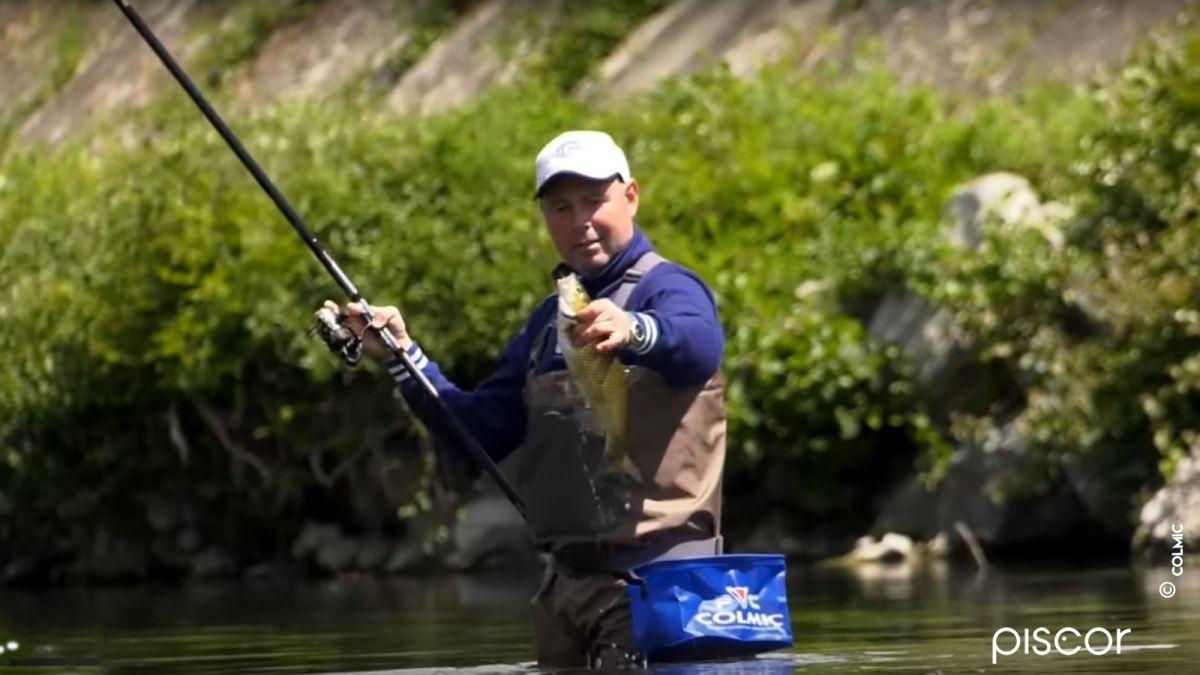 Pêche du Chevesne à la Bolognaise en Rivière 4