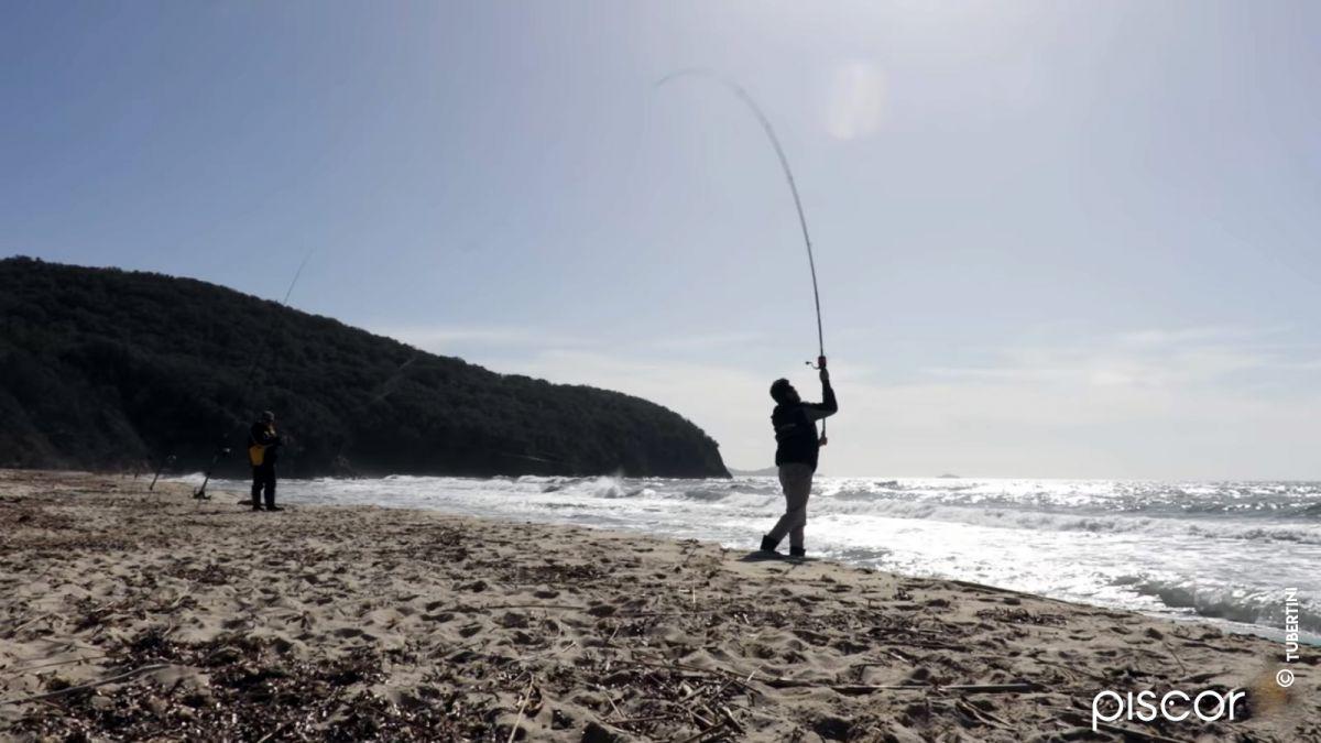 Pêche du Sar et de la Dorade en Surfcasting 1