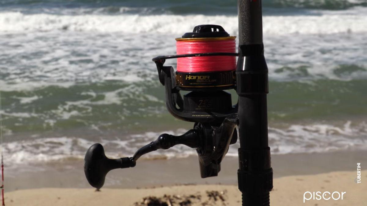 Pêche du Sar et de la Dorade en Surfcasting 3