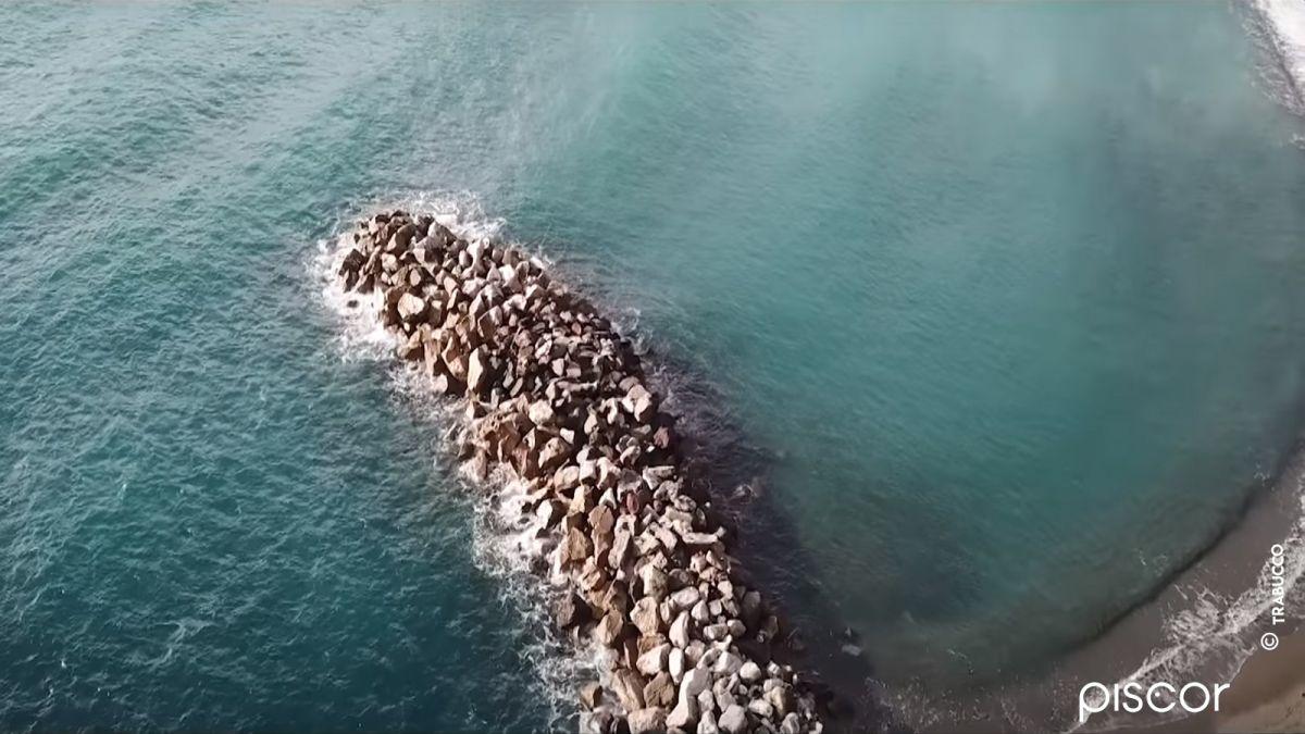 Pêche en Bord de Mer à la Canne Bolognaise 9