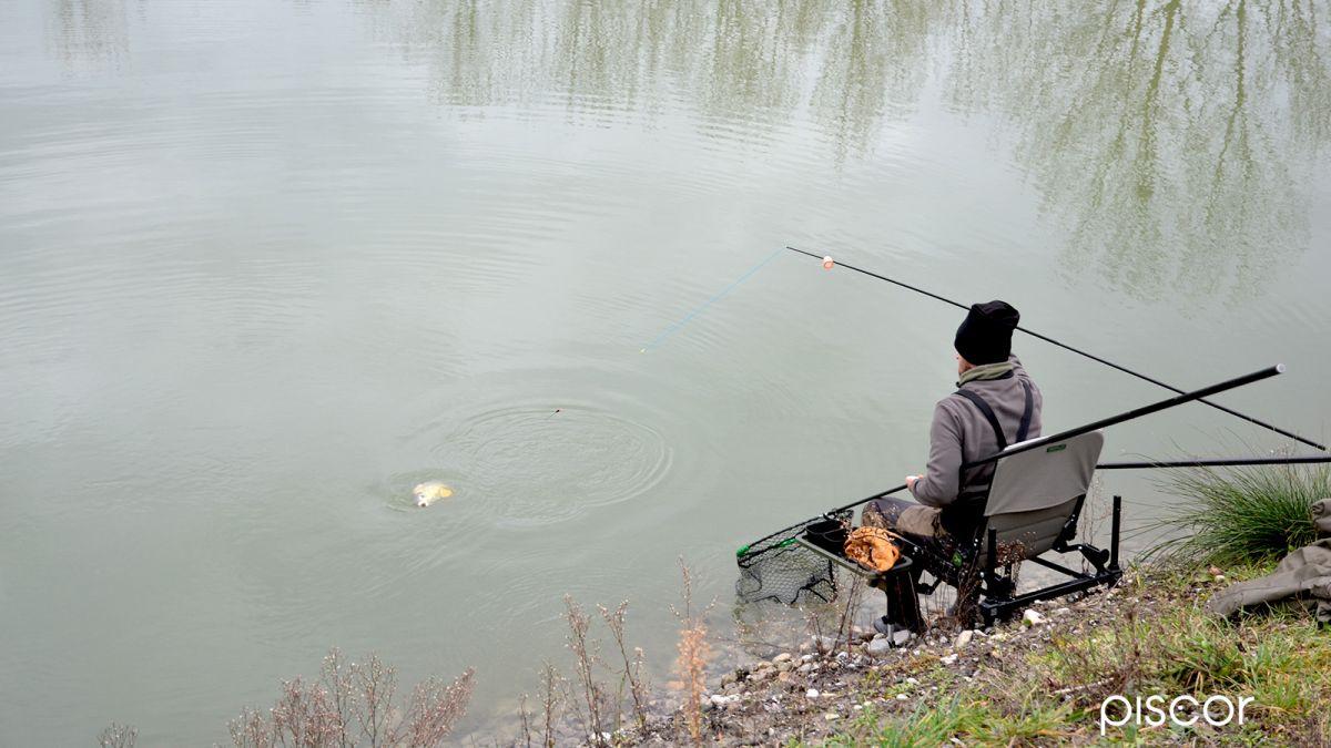 Pêche Hivernale en Carpodrome 1
