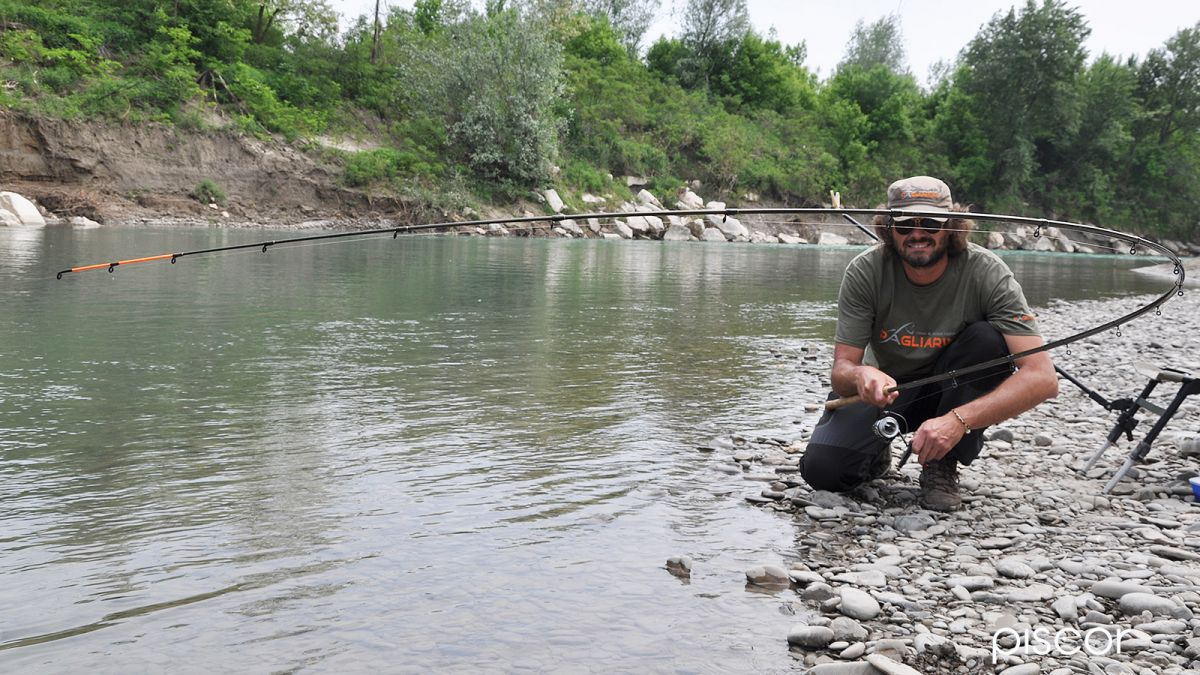pesca a feeder 1