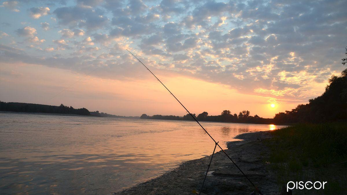 Pesca a Feeder 2