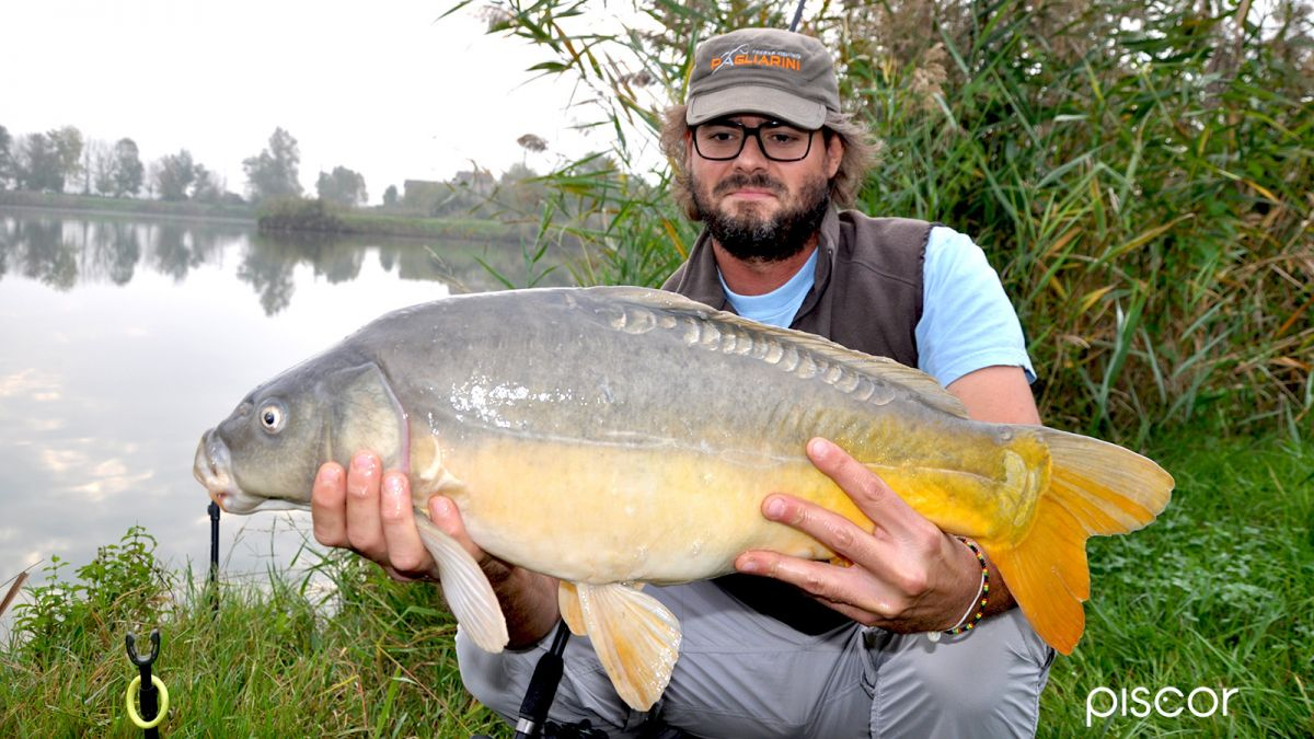 Pesca a Feeder 5