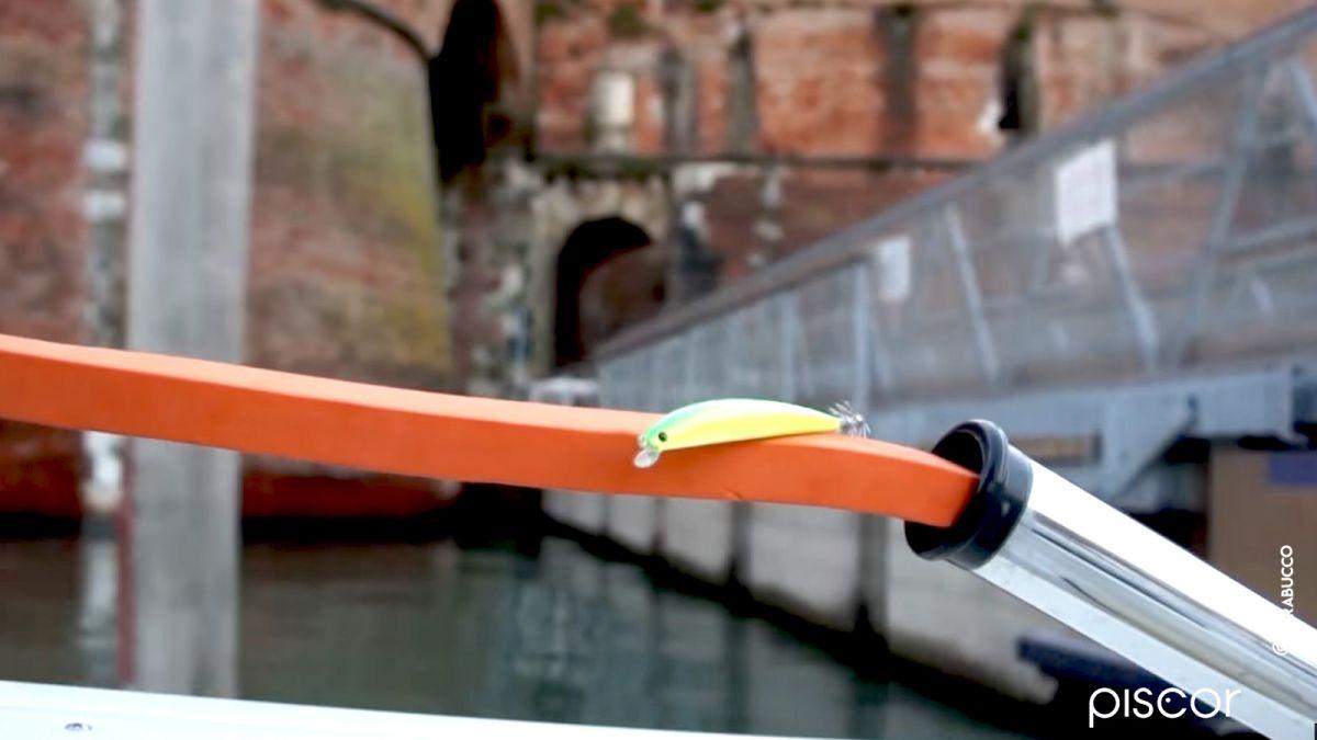 Pesca a Traina ai Calamari 5
