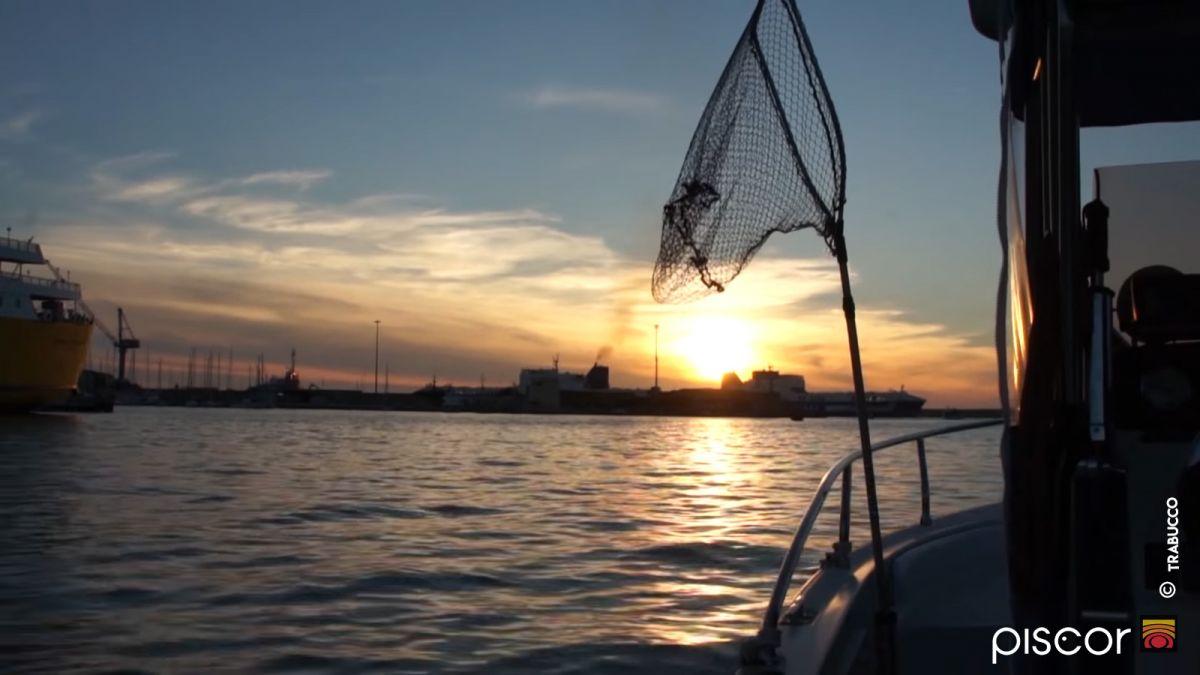 Pesca a Traina ai Calamari 6