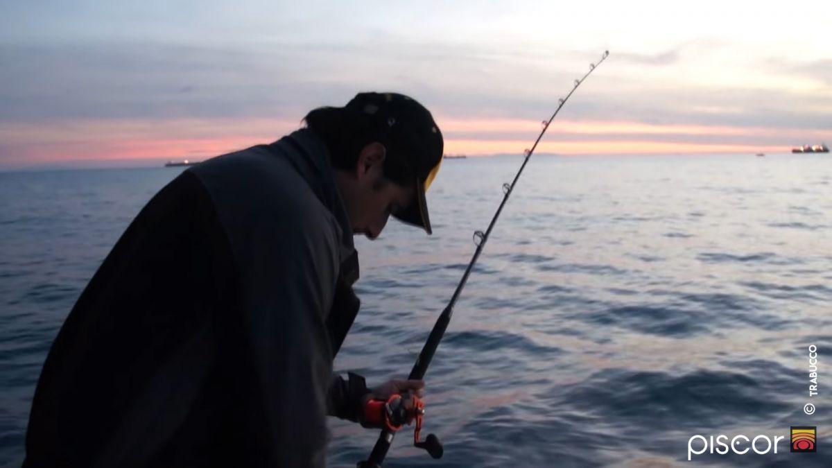 Pesca a Traina ai Calamari 8